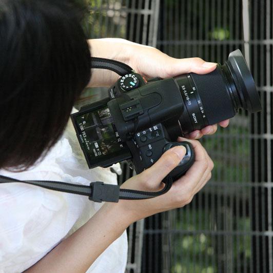 http://www.dgcr.com/kiji/20080821/fig2